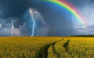 Примета: увидеть радугу – стать счастливым