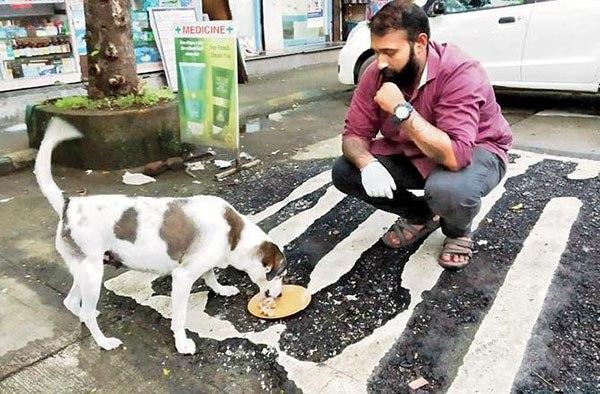 Мужчина кормит бездомную собаку