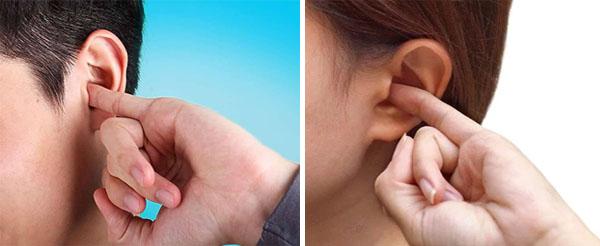 Мужской и женский орган слуха