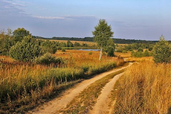 Дорога в родные места