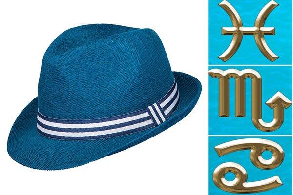 Шляпа для знаков зодиака