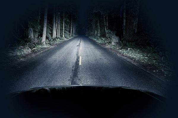 Авто в лесу при свете фар