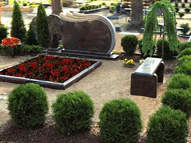 Можжевельник на кладбище