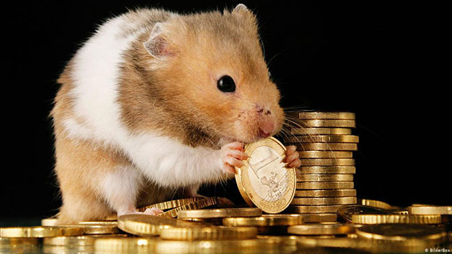 Мышка с деньгами