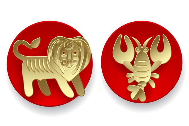 Знаки зодиака: рак и лев